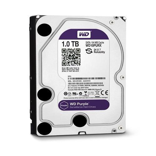 Ổ Cứng HDD WD Purple AV 3.5 1TB(TÍM)